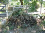 Raw Weed Compost Pile